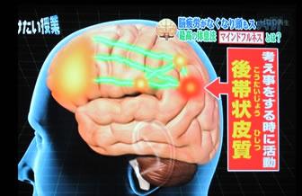 脳はフル活動しています。