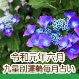 令和元年六月の九星占いです。