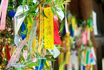 鄭和元年七月の九星毎月占いです。