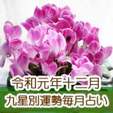 令和元年12月の九星別占いです。